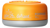 got2b Defiant Define + Shine Pomade 2 oz [052336331815]