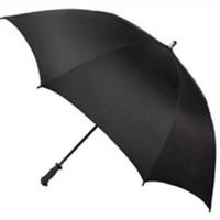 Raines By Totes Auto Open Neverwet Sunguard Umbrella, Assorted Colors 1 ea [038905100280]