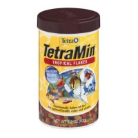 TetraMin Tropical Flakes 2.20 oz  [046798771043]