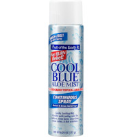 Fruit of the Earth Cool Blue Aloe Mist Continuous Spray 6.24 oz [071661613328]
